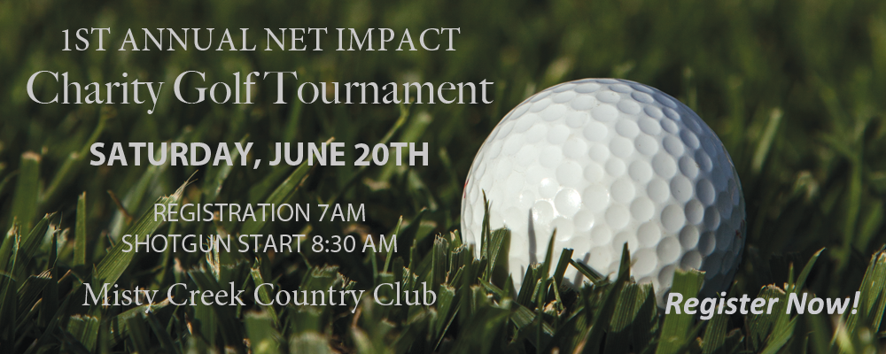 Home-Slider-Net-Impact-Golf1
